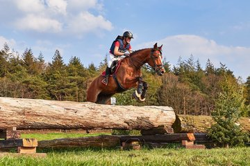 Jumping & Eventing brides