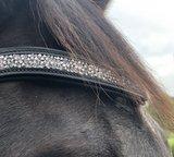Shine Frontal Zwart Bridle & Ride _