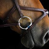 Oscar Filet titanium avec Front Lock (Fager)_