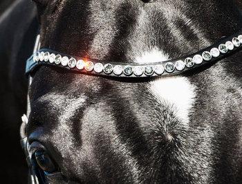 Zizi Frontal Swarovski Crystal Black XL
