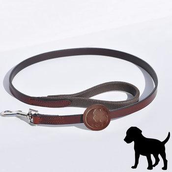 IHWT Laisse de chien longueur 105cm