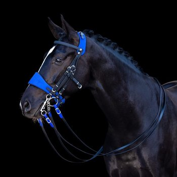Equibridle Blue Lagoon Bride (Double)
