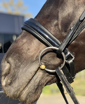 Shine muserolle Noir Bridle & Ride