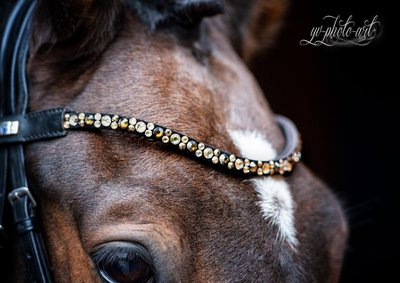 Brown Valloo : Magic Tack Frontal detail