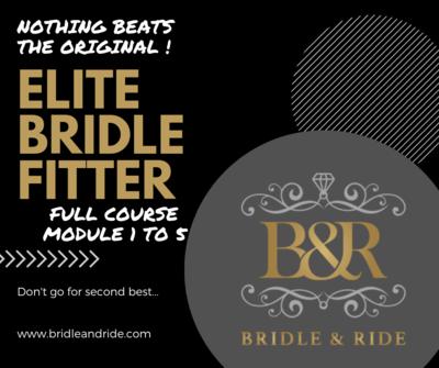 Elite Bridle Fitter : module 1 - 5 sans Bridle Mechanics